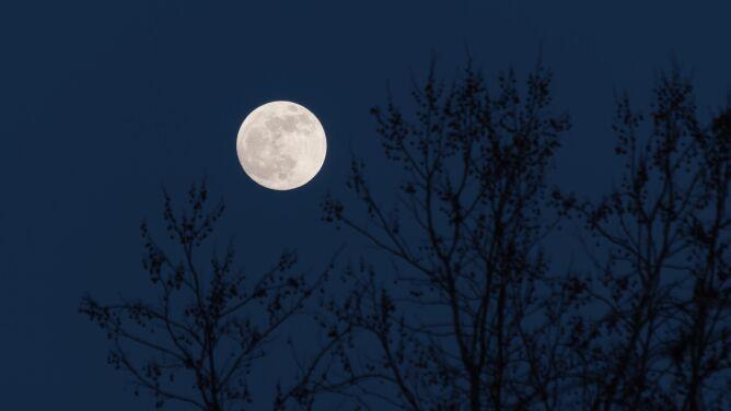 Pełnia Śnieżnego Księżyca 2021. Kiedy i jak ją obserwować?