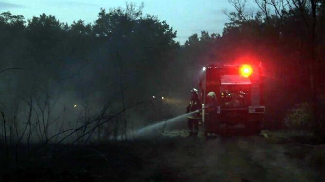Pożary lasów na Węgrzech. <br />Gaszenie utrudniał porywisty wiatr
