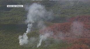 Pożary lasów na Wielkiej Wyspie Piaszczystej