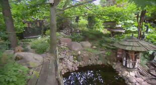 Ogród zatopiony w zieleni (odc. 611)